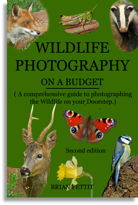 wildlife photography on a budget book